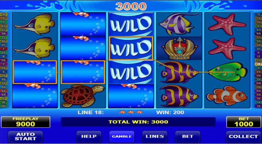 wild shark slot mashine