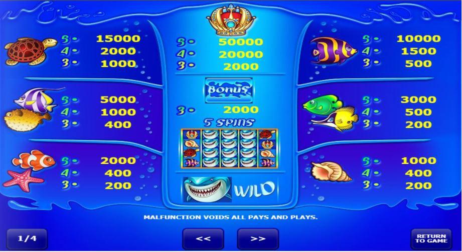 wild shark gameplay